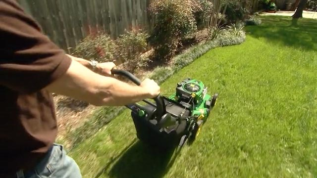 5 great ways to look after your lawn so it looks like a for How often should you mow your lawn