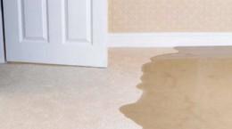 FAQs water damage